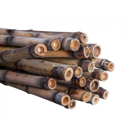 Бамбуковый ствол, д. до 3см, L 3м, декоративный - фото 1