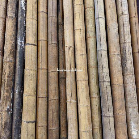 Бамбуковый ствол д.7-9см, L 3,0м СОРТ 3 - фото 1