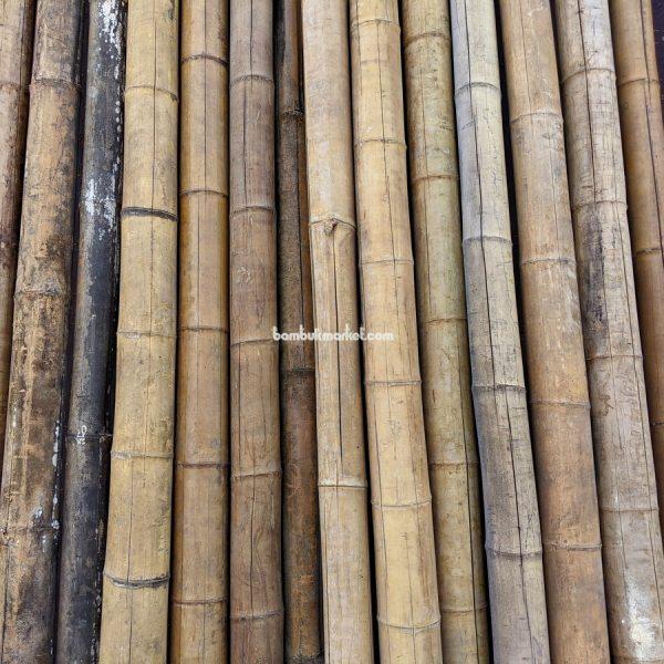 Бамбуковый ствол-К, д.7-9см, L 3,0м СОРТ 3 – фото 1