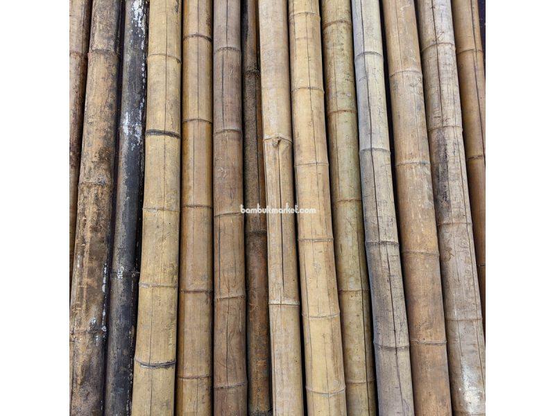 Бамбуковый ствол-К, д.7-9см, L 3,0м СОРТ 3 – фото 7