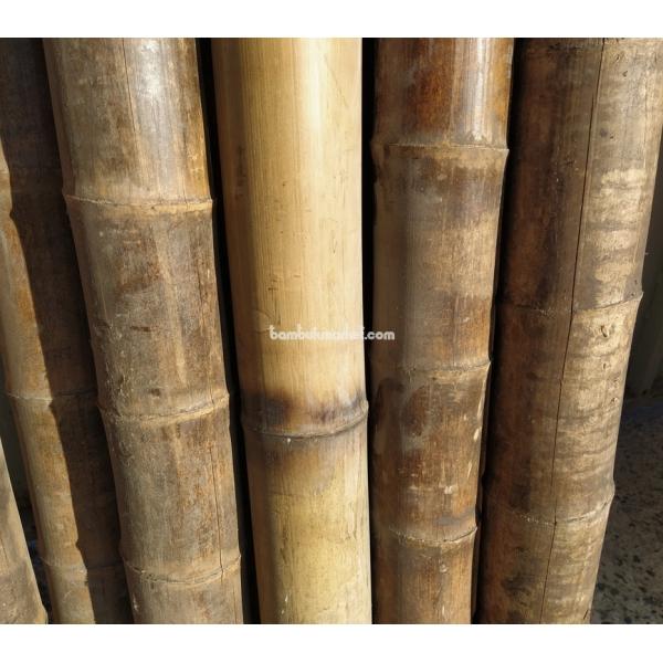 Бамбуковый ствол, д. 9-10 см, L 3м, декоративный СОРТ 2 – фото 9