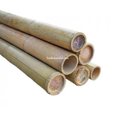 Бамбуковый ствол, д.10-11см, L 3м, натуральный - фото 1