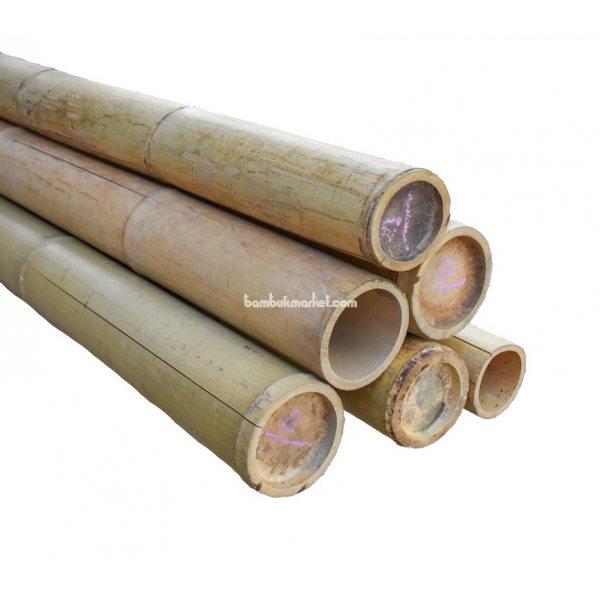 Бамбуковый ствол, д.10-11см, L 3м, натуральный