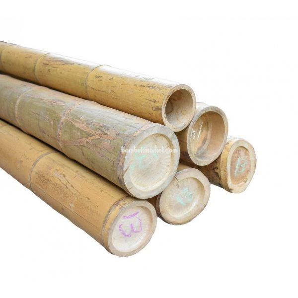 Бамбуковый ствол, д.13-14см, L 3м, натуральный