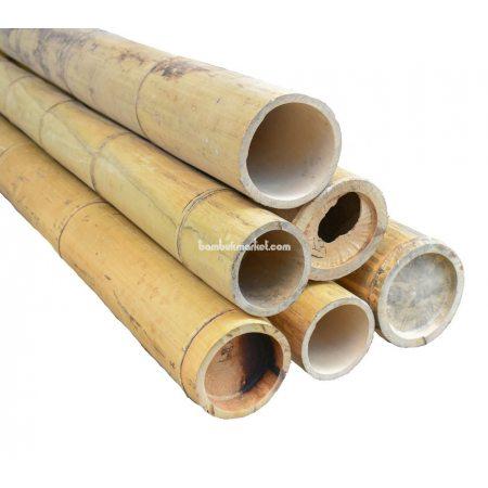 Бамбуковый ствол, д.15-16см, L 3м, натуральный - фото 1