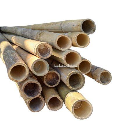 Бамбуковый ствол, д.3-3,3см, L 3м, декоративный - фото 1