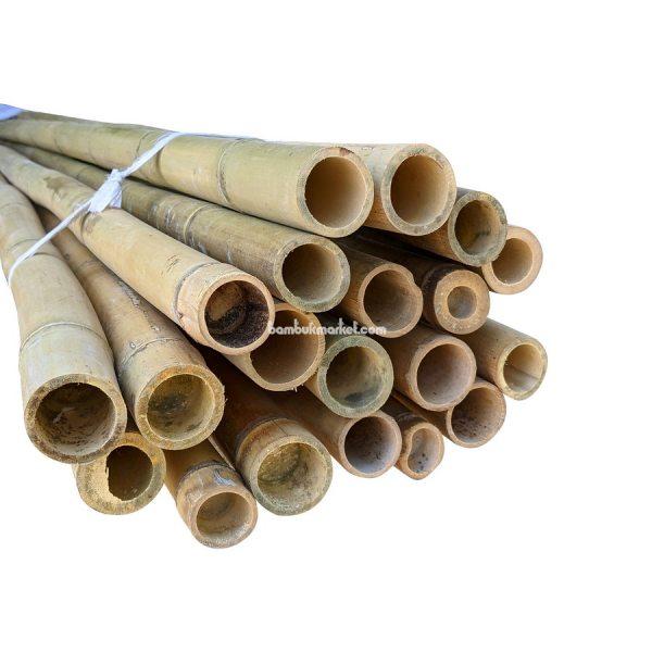 Бамбуковый ствол, д.4-4,5см, L 3м, декоративный – фото 4