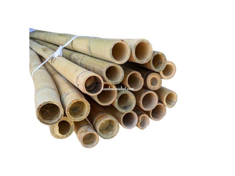 Бамбуковый ствол, д.4-4,5см, L 3м, декоративный – фото 6
