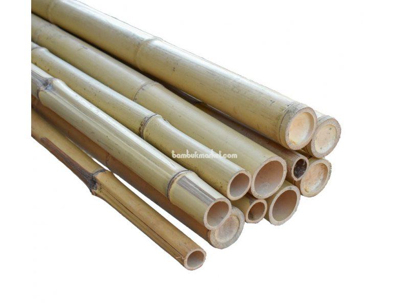 Бамбуковый ствол, д.4-5см, L 3м, натуральный