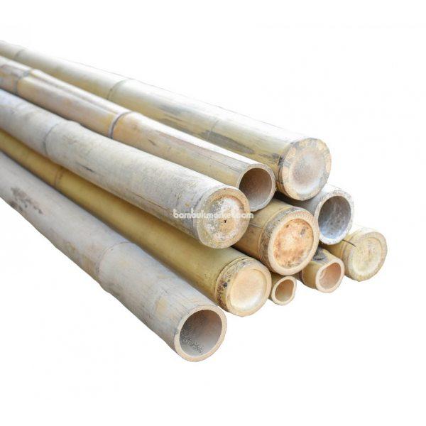 Бамбуковый ствол, д.5-6см, L 3м, натуральный – фото 4