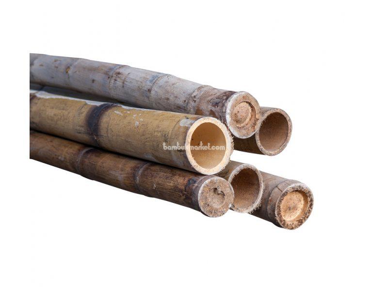 Бамбуковый ствол, д. 5-6 см, L 3м, декоративный СОРТ 2