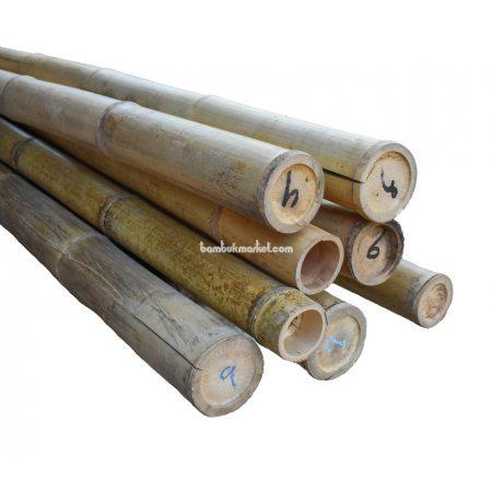 Бамбуковый ствол, д.9-10см, L 3м, натуральный - фото 1