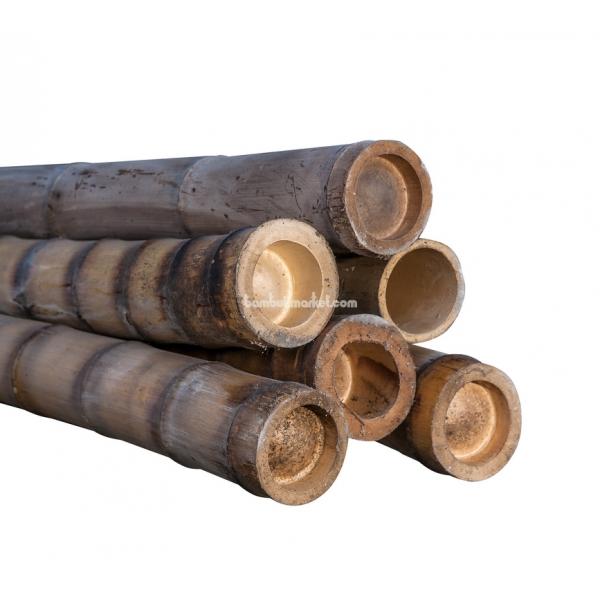 Бамбуковый ствол, д. 9-10 см, L 3м, декоративный – фото 8
