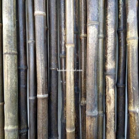 Бамбуковый ствол черный д.3-4см, высота 3 м, СОРТ 2 - фото 1