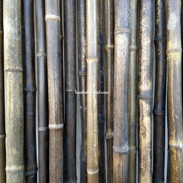 Бамбуковый ствол, д.3-4см, L 3м, черный, СОРТ 2 – фото 6