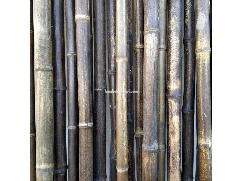Бамбуковый ствол, д.3-4см, L 3м, черный, СОРТ 2 – фото 10