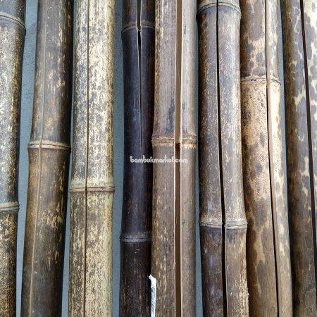 Бамбуковый ствол черный д.4-5см, высота 3 м, СОРТ 3 - фото 1