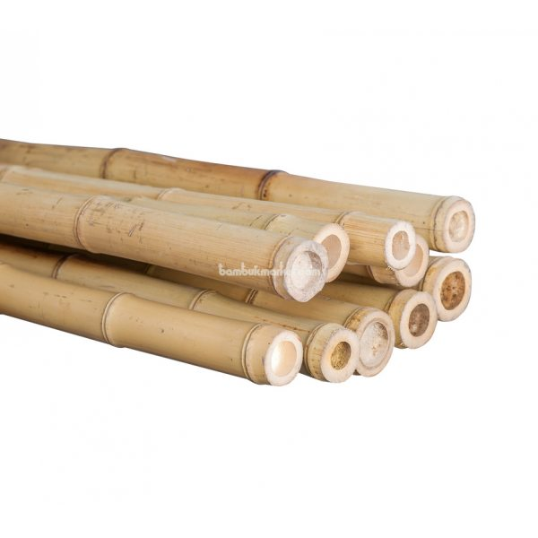 Бамбуковый ствол, д.4-6см, L 4м, декоративный – фото 7