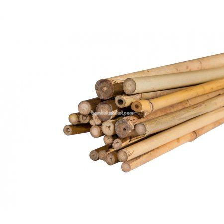 Тонкинский бамбук, д.1,2-1,4см, L 1,5м - фото 1