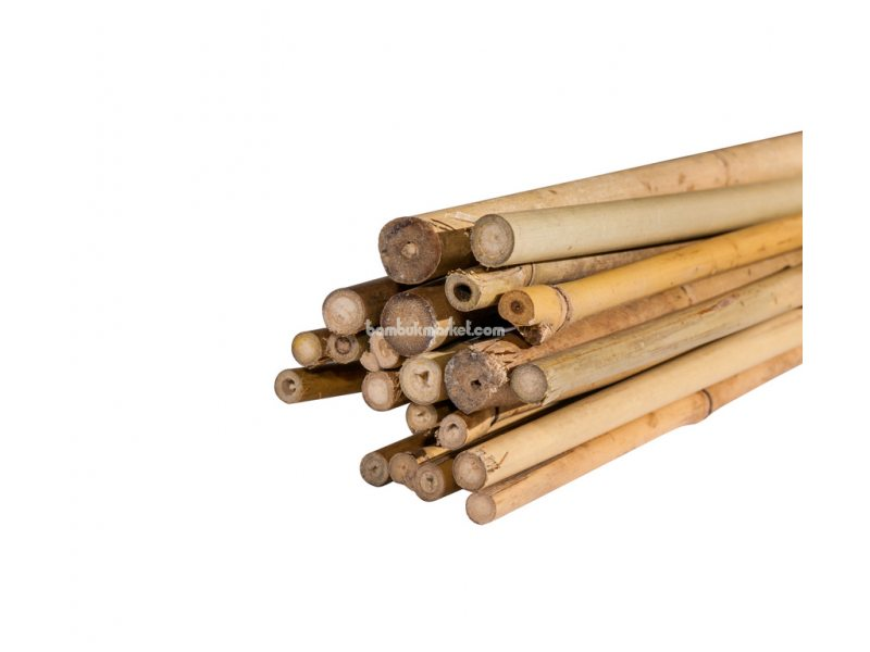 Тонкинский бамбук, д.1,4-1,6см, L 1,5м – фото 2