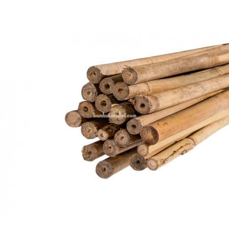 Бамбуковый ствол, д.1,6-1,8см, L 2,1м - фото 1
