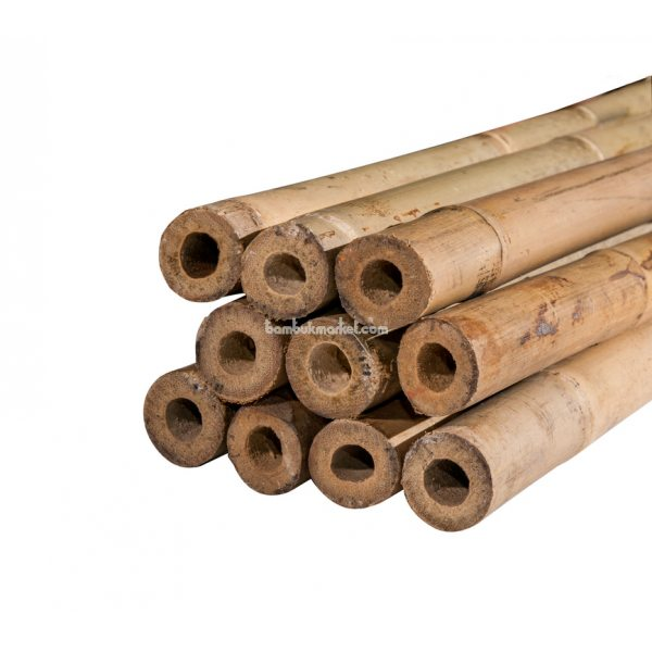 Бамбуковый ствол, д.2,4-2,6см, L 3м, СОРТ 2 – фото 1