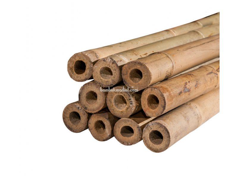 Тонкинский бамбук, д.2,0-2,2см, L 2,1м, СОРТ 2 – фото 6