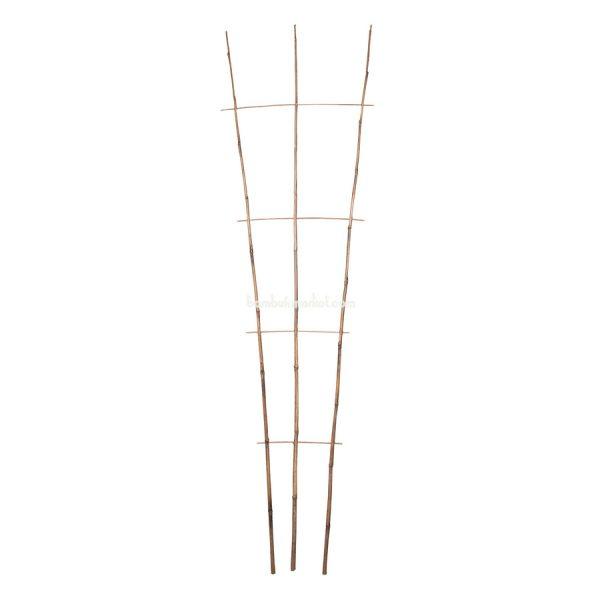 Бамбуковая опора лесенка для растений S 3*4, L 2,1м