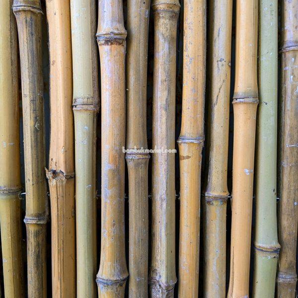 Бамбуковый забор, 1000х3000мм – фото 1