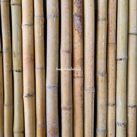 Бамбуковый забор, 1500х3000мм - фото 1
