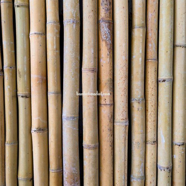 Бамбуковый забор, 1500х3000мм – фото 2
