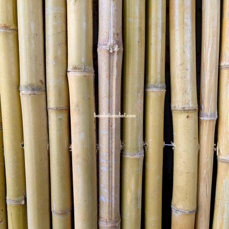 Бамбуковый забор, 2000х3000мм - фото 1